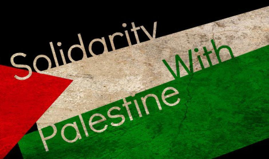 solidar-pal[1]