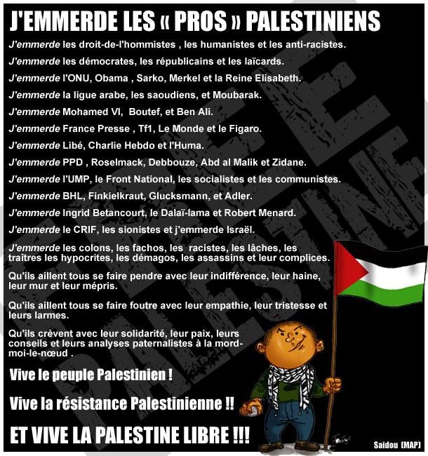 jemmerde_les_pros_palestiniens